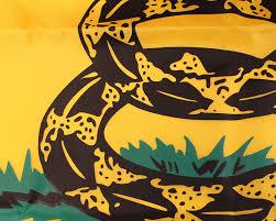 Gadsden Flag History Buy Premium Quality Gadsden Flag Historical Us Flags Federal
