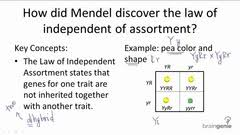 inheritance pattern quizlet cbell biology ninth edition chapter 14 15 mendel and the gene