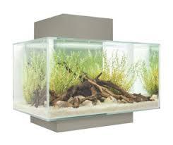 fluval edge aquarium 23l pewter the aquarium shop australia