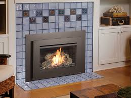 Gas Wood Burning Fireplace Insert by 32 Dvs Gas Fireplace Insert Fireplace Xtrordinair