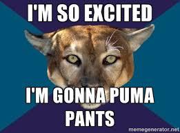 Puma Meme - 46198478 jpg 500 371 funny pinterest