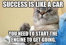 Success Cat Meme - success cat memes imgflip