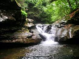Pennsylvania wild swimming images Rock run swimming holes loyalsock state forest roaring branch pa jpg