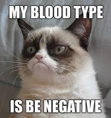Cat Cocaine Meme - catsmemes catsgifmemes funny animal pictures cat memes cats