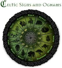 the celtic tree zodiac humans are free