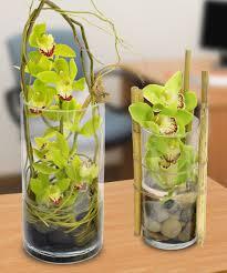 Orchid Flower Arrangements Cymbidium Orchid Desktop Garden Floral Arrangements Woyshners