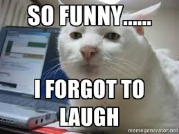 Meme Laugh - funny laugh cat meme picture