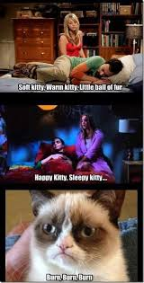 Sleepy Kitty Meme - happy kitty sleepy kitty http www dodgyshit com pin 20620