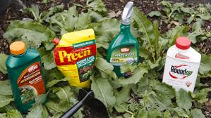 planning and persistence how to win the war on weeds inforum