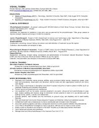 Account Executive Resume Example by Chief Healthcare Ceo Resume Example Executive Resume Sample