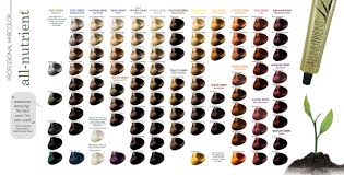 hair color chart all nutrient hair color chart learnfree me