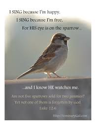 his eye is on the sparrow seminary gal