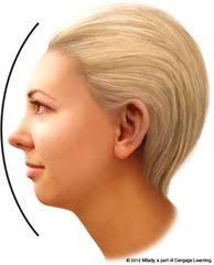 flattering the hairstyles for with chins hairstyles for big nose small chin hair