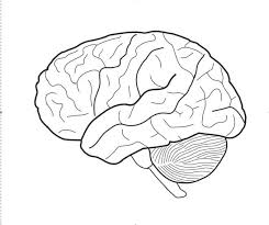 Brain Coloring Page Fresh Brain Coloring Page 25 For Your Seasonal Brain Coloring Page