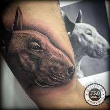 100 Bull Terrier Tattoo Flickriver Random Photos From Baron