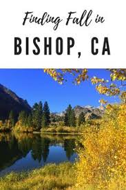 bishop california downtown bishop ca border patrol
