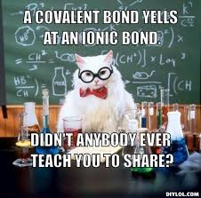 Pirate Meme Generator - chemistry cat meme generator a covalent bond yells at an ionic