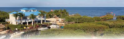 key largo weddings pointe suites key largo wedding venue