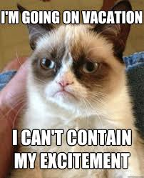 Meme Vacation - i m going on vacation cat meme cat planet cat planet