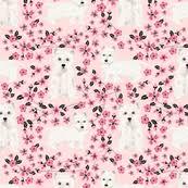 Cherry Blossom Upholstery Fabric Cherry Blossom Fabric Wallpaper U0026 Gift Wrap Spoonflower