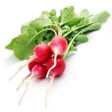 cuisiner les radis le radis préparer cuire associer cuisiner interfel les
