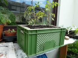 gem se pflanzen balkon gardening gemüse auf balkon und terrasse anbauen