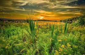 Pennsylvania scenery images Sunrise sunset usa pennsylvania mountain lakes sunsets sky grass jpg