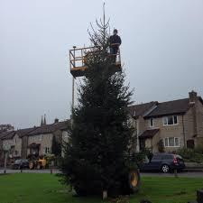 Christmas Tree Shop Flagpole by Latest News Osborne U0027s Christmas Trees Somerset West Wiltshire