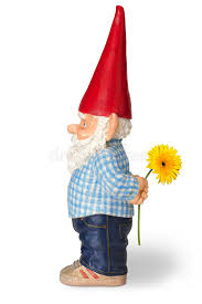 garden gnome with flower stock image image of dwarf 29607269