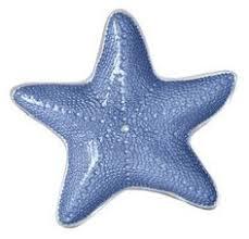 starfish platter mariposa seaside starfish platter reviews wayfair fritidshus