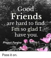 Good Friends Meme - good friends are hard to find i m so glad1 have you project