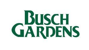an special thanksgiving gift busch gardens giraffe gives birth