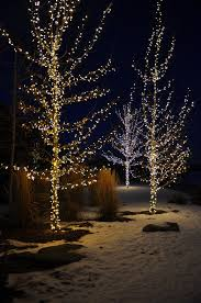 holiday lighting and decorating in denver designscapes colorado