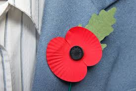 why do we wear poppies for remembrance day when should we wear