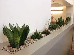 indoor modern planters modern planters indoor hall traditional with bulb pedant light cat