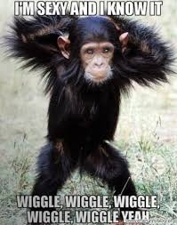 Funny Sexy Memes - 35 very funny monkey meme photos and pictures