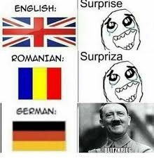 Meme Definition English - english surprise romanian surpriza german blitzkrieg dank meme