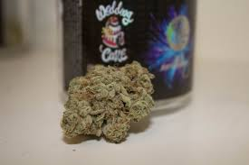 wedding cake genetics a real review of exotikz wedding cake the dankest cake on the shelf