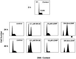 cellular pharmacology of the combination of the dna topoisomerase