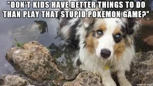 Facebook Post Meme - after every anti pokemon go facebook post meme on imgur