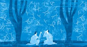 why feynman diagrams are so important quanta magazine