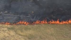 Chicago Wildfire Highlights by Brush Fire Breaks Out Along Roxborough Park Road Cbs Denver