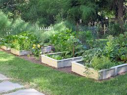 garden ideas raised garden beds plants for small gardens growing