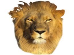 lion mask manycam effect lion mask