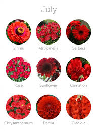 wedding flowers july best 25 seasonal flowers ideas on weddings by season
