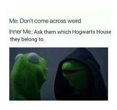 Harry Potter House Meme - 25 of the most hilarious harry potter memes inverse