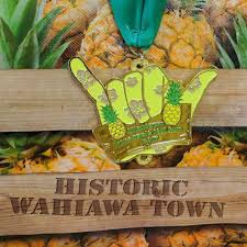 pineapple pineapple run 10k wahiawa hawaii facebook