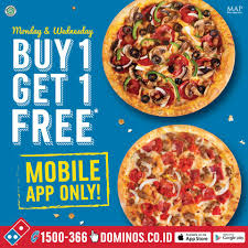 Coupons For 6 Flags Dominos Pizza Coupons Jakarta Coupon For Six Flags New England