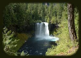 Oregon scenery images Oregon west cascades national scenic byway scenery jpg