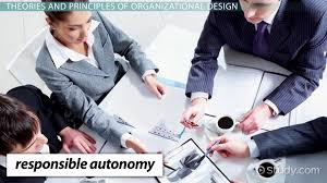 organizational design theory principles u0026 definition video